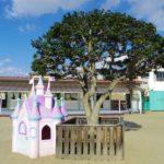 木の実幼稚園のシンボル つばき|大崎市木の実幼稚園